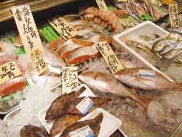 鮮魚 やました